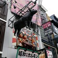 Photos: 昭和ホルモン