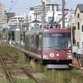 世田谷線300系 305F【玉電開業110周年記念ラッピング】