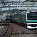 常磐快速線E231系0番台 マト110+マト131編成