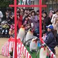 20150103 長崎ペンギン水族館 24