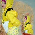 Photos: maid phetapiga 50365018