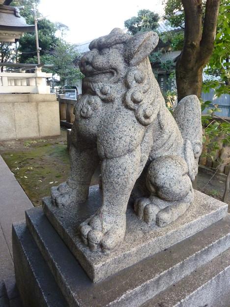 猿江神社 06