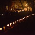 Photos: 石燈籠 4