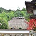 写真: 永明寺の彼岸花