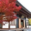 写真: 永興寺薬師堂