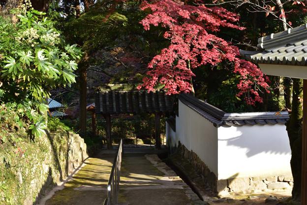 山門脇の階段