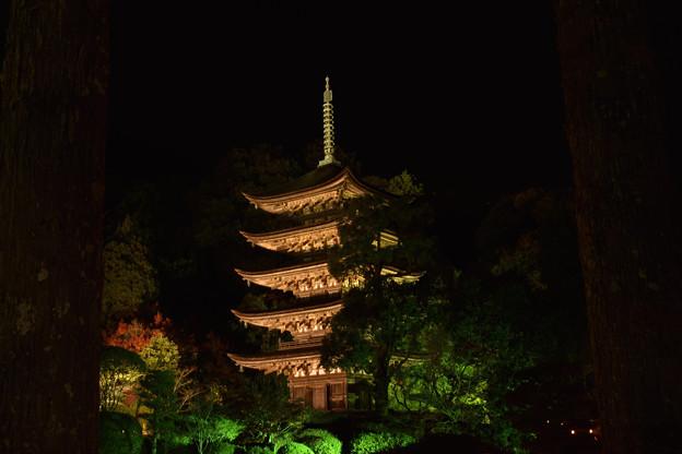 夜の五重塔 4