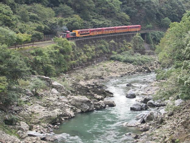 嵯峨野トロッコ列車2