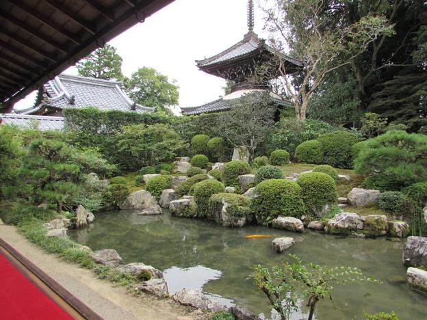 穴太寺庭園(書院より)1
