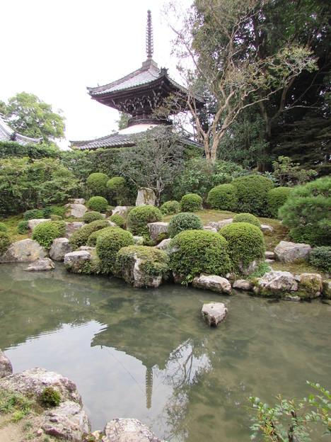 穴太寺庭園2