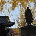 頂妙寺・日蓮像3
