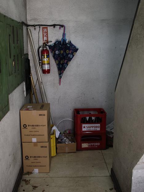 写真: 廊下の傘