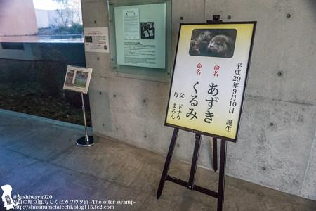 fukushima171218001