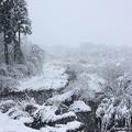 和佐谷雪景色