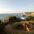 写真: 犬吠埼の海岸-1