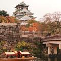 今年も秋の大阪城