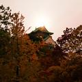 天守と秋と太陽と