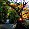 Photos: 談山神社3