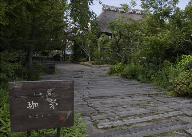 Photos: 茅葺屋根のカフェ