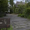茅葺屋根のカフェ
