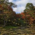 Photos: 霞城公園の秋