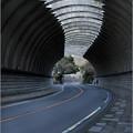 Photos: トンネルを歩く