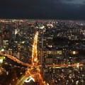 写真: タワーから見るタワー