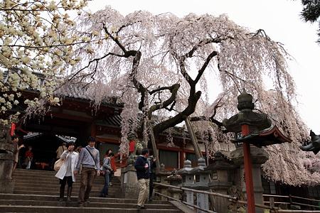 奈良・氷室神社