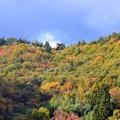 写真: 福島市郊外の紅葉!