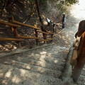 Photos: 自然学習歩道終点の階段