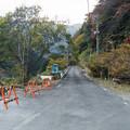 Photos: 関の沢へ続く道