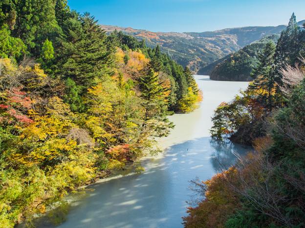 夢の吊橋から眺める井川湖