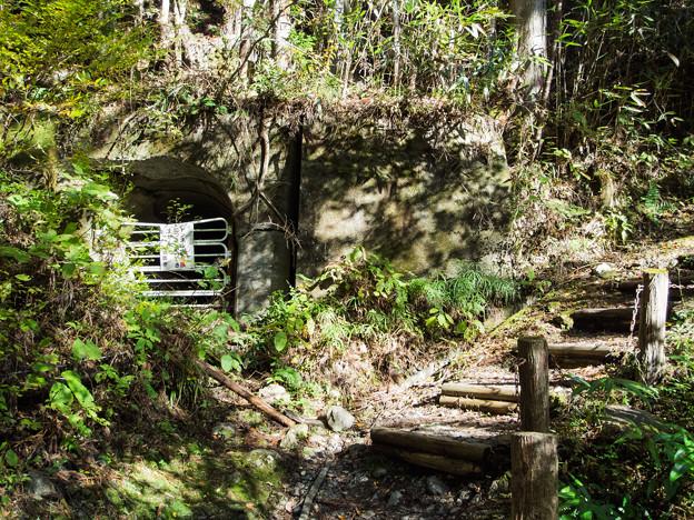 夢の吊橋先の廃トンネル