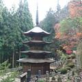 長野県安楽寺
