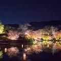 御船山楽園 紅葉 ライトアップ 2
