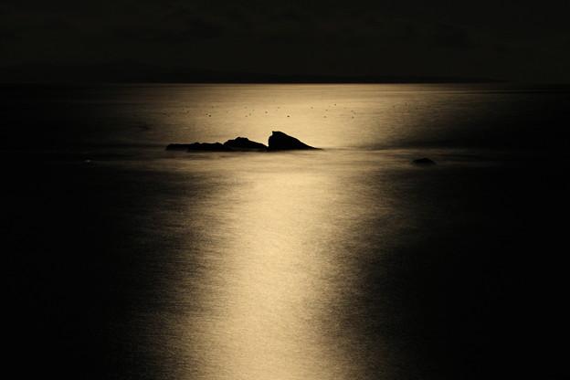 月光に浮かぶ