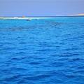 Photos: コバルトブルーの海 1)