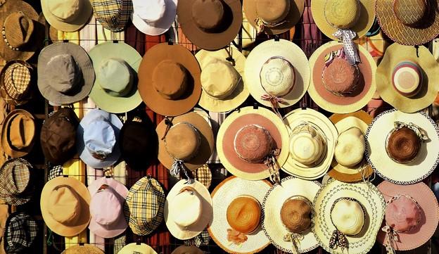 帽子の写真
