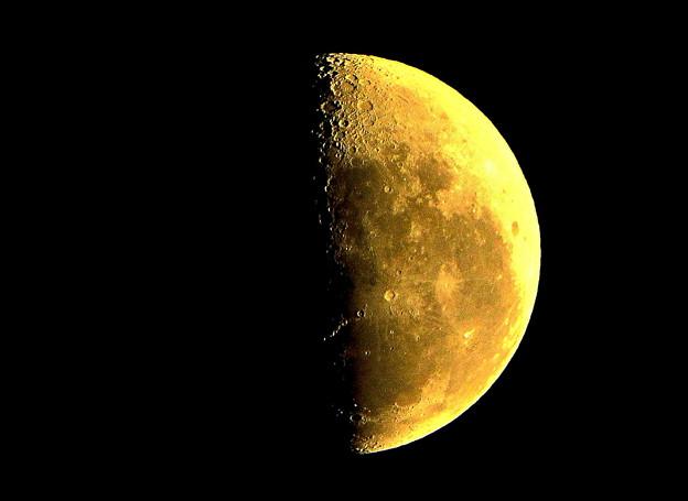 写真: 半月