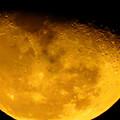 写真: 月面写真