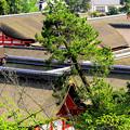 Photos: 神社の屋根