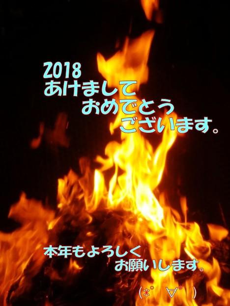 写真: 年賀2018