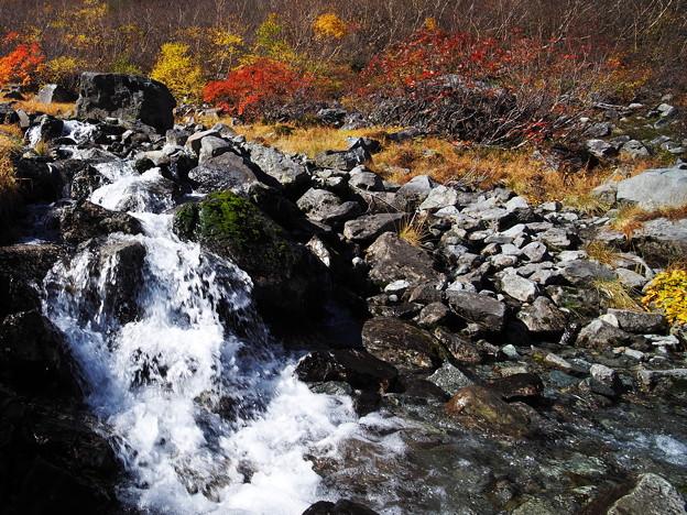山で蓄え、川を下り、地を潤す