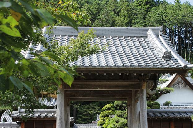 長興寺 山門