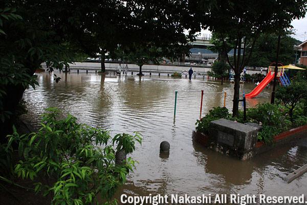 写真: 池になった公園