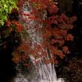秋の水飛沫~♪