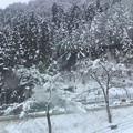 Photos: 郡上八幡冬景色。