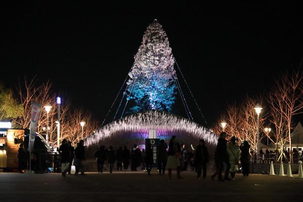 Photos: 世界一のクリスマスツリー06