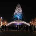 世界一のクリスマスツリー06