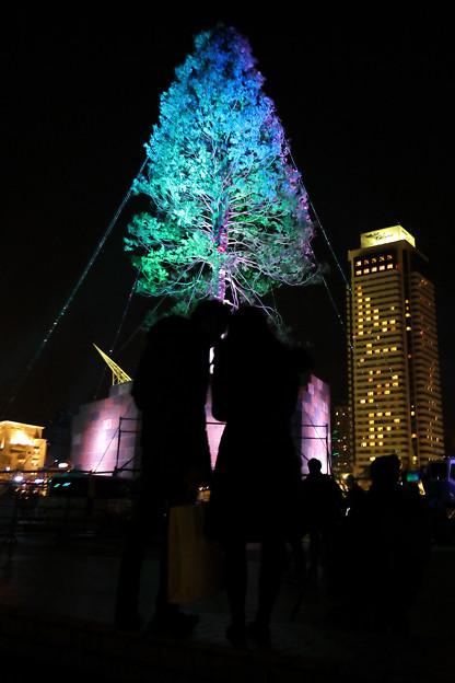 世界一のクリスマスツリー11